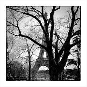 Cyril Jayant - Paris Eiffel tower