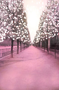 Surreal Paris Decor Photos Prints - Paris Jardin des Tuileries Trees Pink Twinkling Lights Trees- Jardin des Tuileries Park and Garden Print by Kathy Fornal