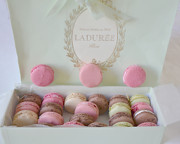 Bakery Art - Paris Laduree Pastel Macarons and Laduree Box - Paris Dreamy Pink Macarons Fine Art Photography by Kathy Fornal