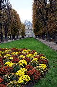 Autumn Photos Posters - Paris Luxembourg Gardens and Trees - Luxembourg Gardens Parks Autumn - Paris Fall Autumn Colors Poster by Kathy Fornal