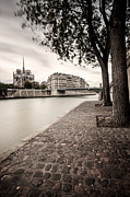 Ile De La Cite Art - Paris River Walk by Brian Jannsen