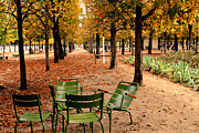 Garden Art Prints - Paris Tuileries Gardens and Trees - Jardin des Tuileries Gardens Parks Autumn - Paris Fall Autumn Print by Kathy Fornal