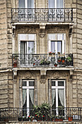 Geraniums Framed Prints - Paris windows Framed Print by Elena Elisseeva