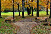 Park Bench Print by Frozen in Time Fine Art Photography