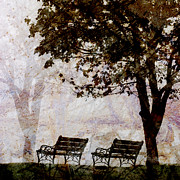 Lonesome Framed Prints - Park Benches Square Framed Print by Carol Leigh