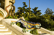 Parc Guell Prints - Park Guell Dragon Print by Deborah Smolinske