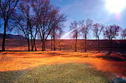Gunter Nezhoda Metal Prints - Park in McGill near Ely NV in the evening hours Metal Print by Gunter Nezhoda