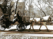 Horse And Buggy Framed Prints - Park Ride Framed Print by John Rizzuto