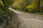 Gravel Road Photos - Park Road Autumn 2 B by John Brueske