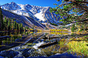 Aspen Fall Colors Photos - Parker Lake California by Scott McGuire