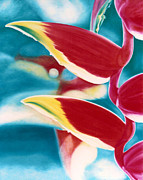 Parrot Print Paintings - Parrot Beak Heliconia 2 by Rene Holovsky