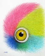 Parrot Art Print Prints - Parrot Eye Print by Oiyee  At Oystudio