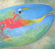 Wagner Chaves - Parrot Fish