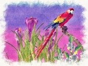 Talking Painting Acrylic Prints - Parrot Acrylic Print by Liane Wright