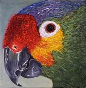 Marsha Thornton - Parrot