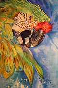 Parrot Print Paintings - Parrothead by Teresa Grace Fourre