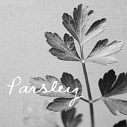 Photography Mixed Media Posters - Parsley Poster by Linda Woods