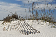 Florida Landscape Photography Prints - Partially Buried Fence on Florida Gulf Coast Sand Dunes Print by Bruce Gourley