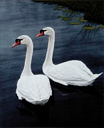 Swans... Paintings - Partners by Michael Swanson