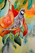 Pear Tree Painting Metal Prints - Partridge In A Pear Tree Metal Print by Beverley Harper Tinsley