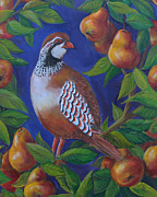 Pear Tree Painting Metal Prints - Partridge in a Pear Tree Metal Print by Kristine Kainer