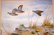 Boris Riab - Partridges In Flight