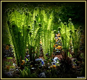 David Kovac Metal Prints - Party Ferns Metal Print by David Kovac