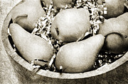Nutrition Mixed Media - Party Pears BW by Andee Photography