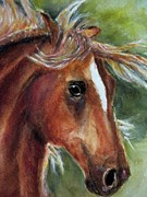 Paso Fino Stallion Prints - Paso Fino Print by Carolyn Gray