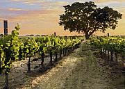 Vineyard Landscape Digital Art Prints - Paso Vineyard  Print by Sharon Foster