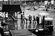 Water Taxi Framed Prints - passengers getting off granville island water taxi false creek Vancouver BC Canada Framed Print by Joe Fox