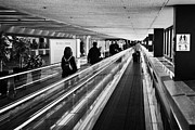 Air Travel Framed Prints - passengers on moving walkway at San Francisco International Airport California USA Framed Print by Joe Fox
