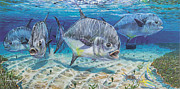Bonefish Framed Prints - Passing Through Framed Print by Carey Chen