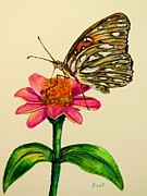 Passion Drawings Posters - Passion butterfly on zinnia Poster by Zulfiya Stromberg