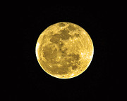 Man-in-the-moon Metal Prints - Passover Full Moon Metal Print by Al Powell Photography USA