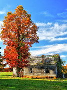 Vivid Fall Colors Framed Prints - Past its Prime I - A Barn in the Fall Framed Print by Dan Carmichael