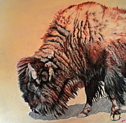 American Bison Pastels Prints - Pastel Buffalo Print by Ann Marie Chaffin