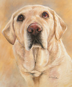 Traditional Pastels Prints - Pastel Portrait Print by Karen Cade