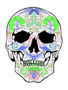 Scull Posters Photos - Pastel Scull by Mauro Celotti