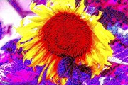 Pastel Sunflower Print by Annie Zeno