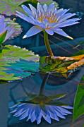 Pastels In Water Print by Byron Varvarigos