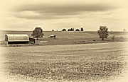 Shed Acrylic Prints - Pastoral Pennsylvania sepia Acrylic Print by Steve Harrington