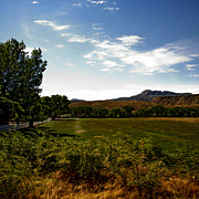 Blue Skies Prints - Pasture Lands Print by Gilbert Artiaga