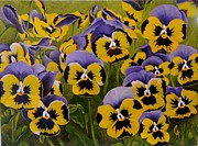 Carol Avants - Patch of Pansies