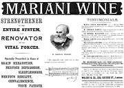 Patent Medicine Ad, 1893 Print by Granger