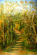 Madeline  Lovallo - Path in the Woods