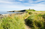 Embleton Prints - Path to Dunstanburgh  Castle Print by David Head