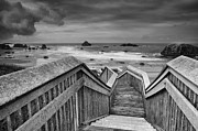 Steps Prints - Path to the Beach Print by Andrew Soundarajan
