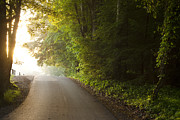 Cades Cove Photo Posters - Path to the Light Poster by Andrew Soundarajan
