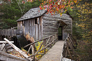 Grist Mill Photos - Path to the Mill by Andrew Soundarajan